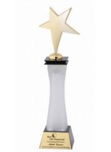 "STAR AWARD 13.5"" H MOQ 10 Pcs"